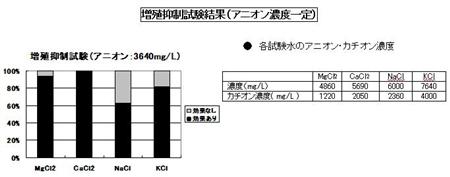 61_R_R.jpg
