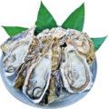 「室戸海洋深層水仕込みの牡蠣」12月11日(月)より新発売!
