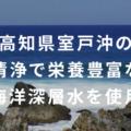 世界初!海洋深層水を電気分解したアルカリ性ボトルドウォーター「カラダ還元ウォーターI'm fine」をリニューアル発売!